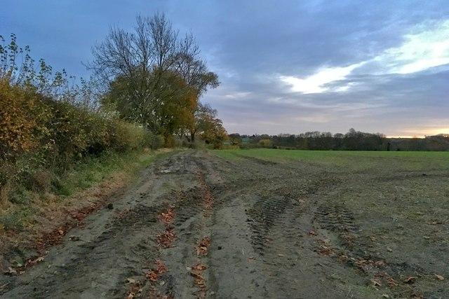 Farm track going towards The Spinney