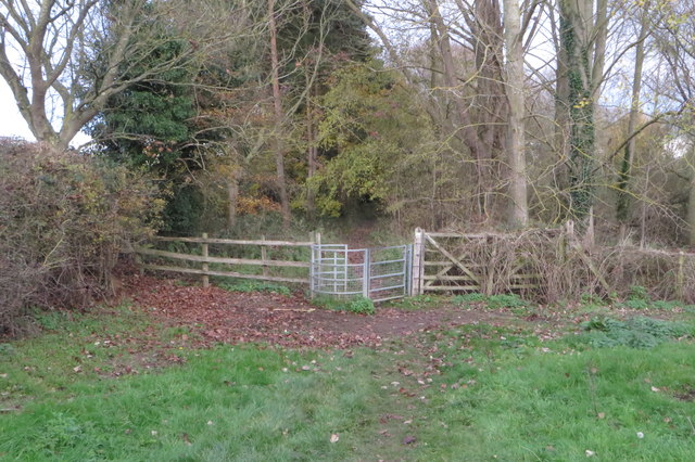 Ouse Valley Way goes into the woods