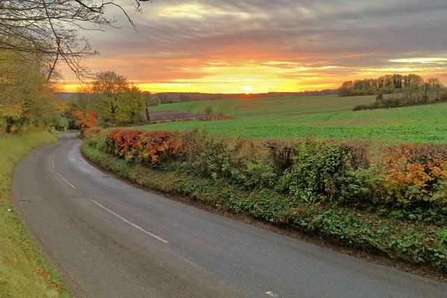 The road down to Pavenham