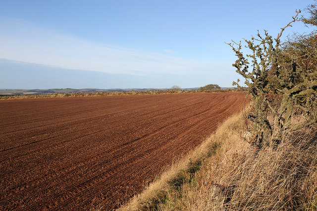 An arable field corner at Hume