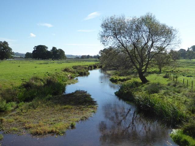 River Kenn - Powderham Castle estate