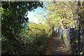 SK2762 : Path behind Darley Dale station looking north by Robert Eva