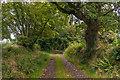 SX2687 : Track to Penheale Barton by Ian Capper