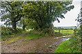 SX2687 : South of Penheale Barton by Ian Capper