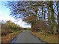 SP8702 : King's Lane by Robin Webster