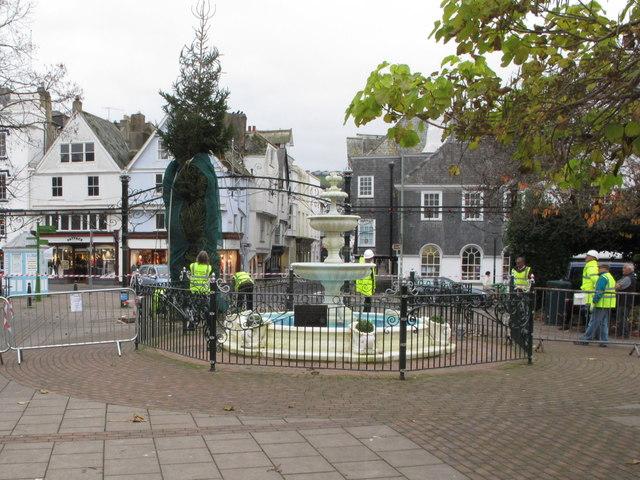 Installing a Christmas tree, Royal Avenue Gardens, Dartmouth