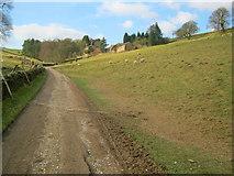 SK2468 : Track to Calton Houses by Trevor Rickard
