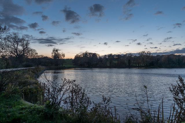 Highgate Men's Bathing Pond, Hampstead Heath