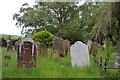 TQ6741 : Churchyard, Church of All Saints by N Chadwick
