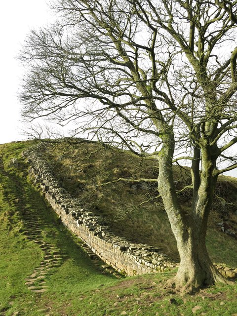 Hadrian's Wall at Sycamore Gap