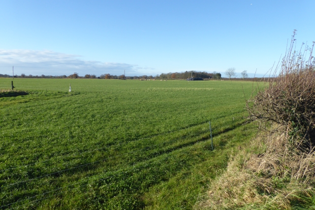 Farmland north of Askham Richard