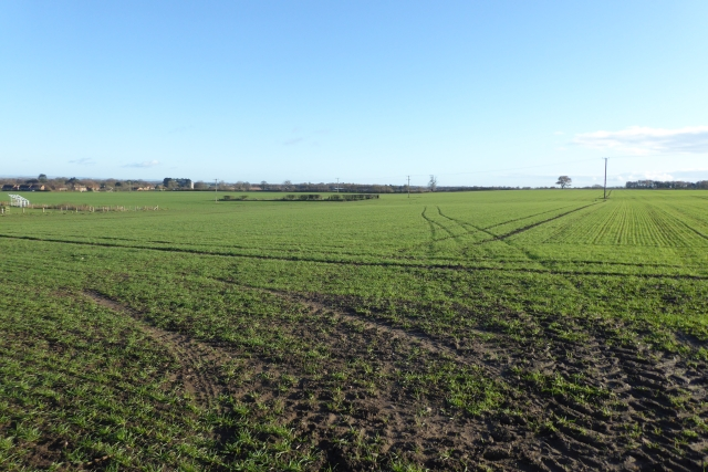 Farmland off Wetherby Road