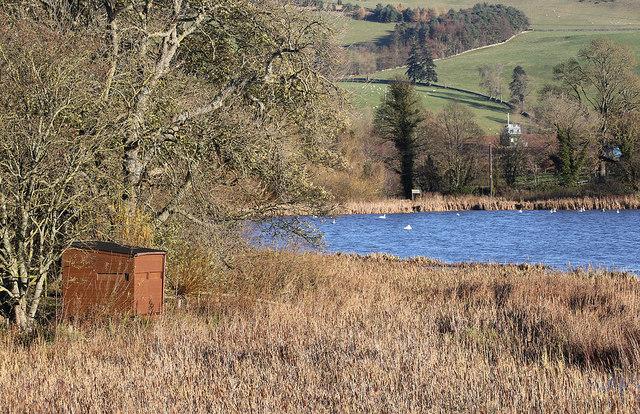 The bird hide at Yetholm Loch
