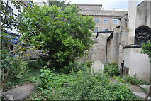 TL4458 : Overgrown churchyard, Church of St Edward King and Martyr by N Chadwick