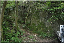 SX4449 : Disused quarry by N Chadwick