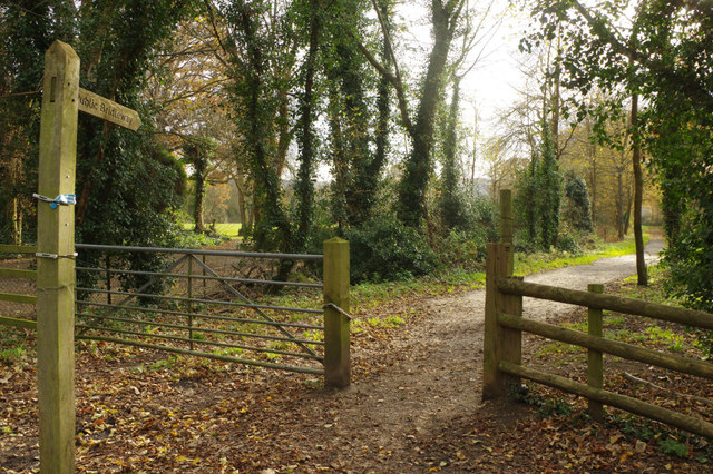 Bridleway from Bletchingley Road