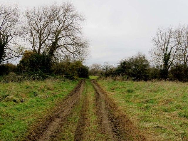 The footpath across South Hinksey Meadow