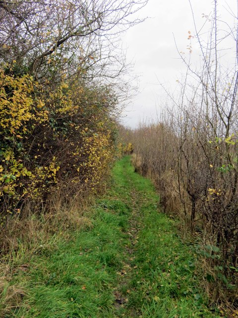 Footpath from South Hinksey