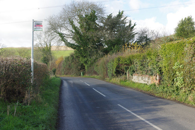 Road east of East Meon