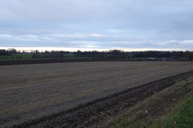 Farmland beside Wetherby Road