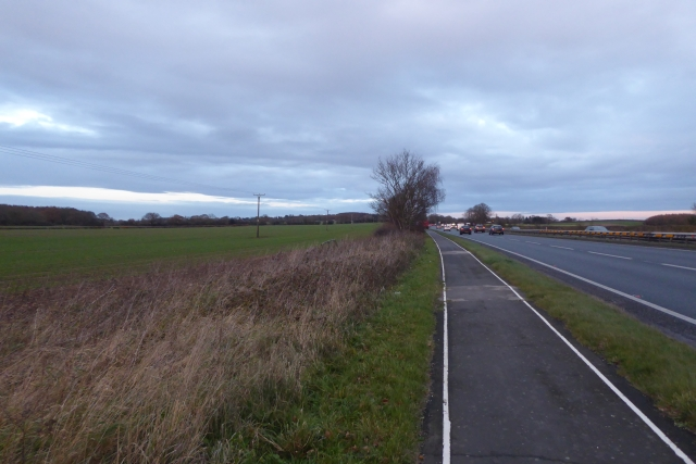 Cycle path along the A64