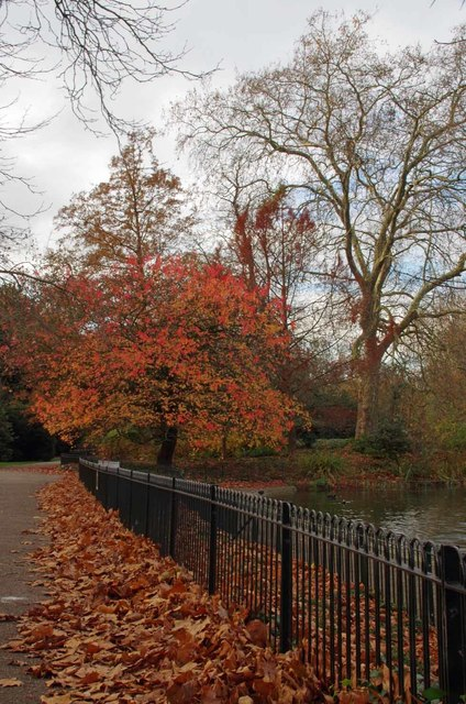 The Last Day of Autumn in Battersea Park