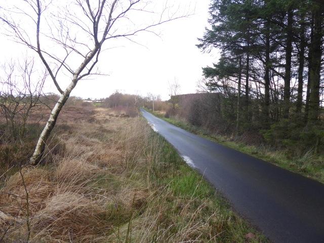 Cloughglass Road, Loughmacrory