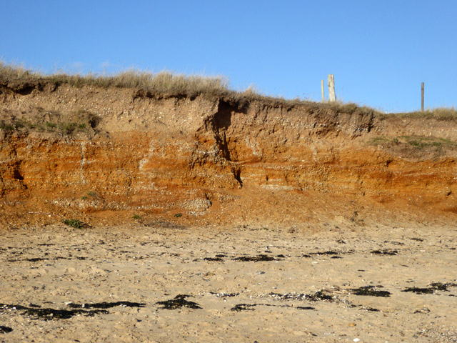Low cliff, Cudmore Grove Country Park