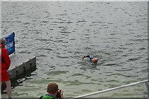 TQ4080 : Finishing the Great Newham Swim by N Chadwick