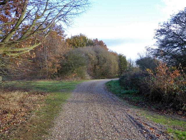 Track, Layer Breton Heath