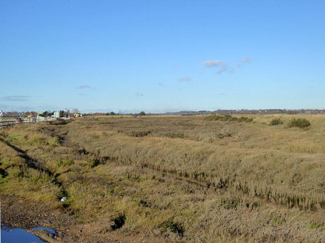 Saltings by The Strood, Mersea Island