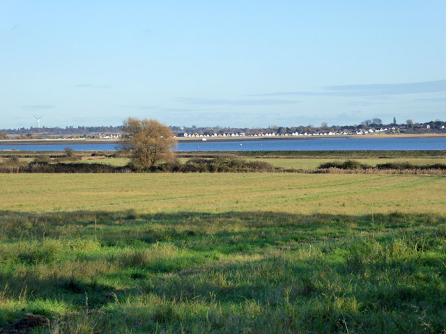 View east over fields, East Mersea