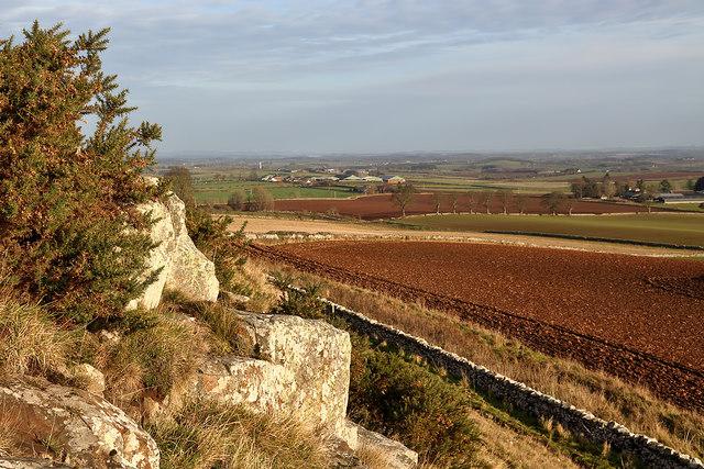 Arable farmland by Sweethope Hill