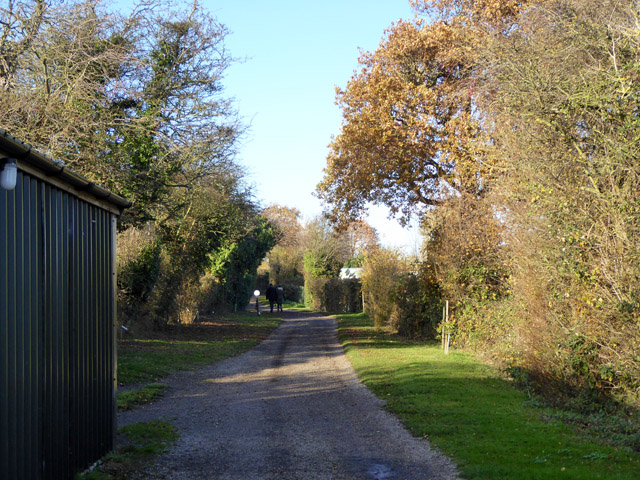 Track towards Fen Farm