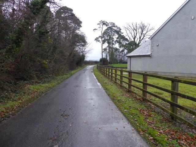 Rash Road