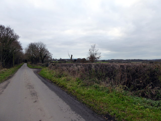 Rickney Road