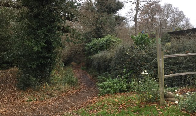 Path Junction