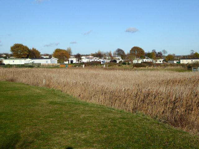 Caravan site and holiday park, East Mersea