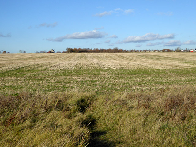 Stubble field, East Mersea