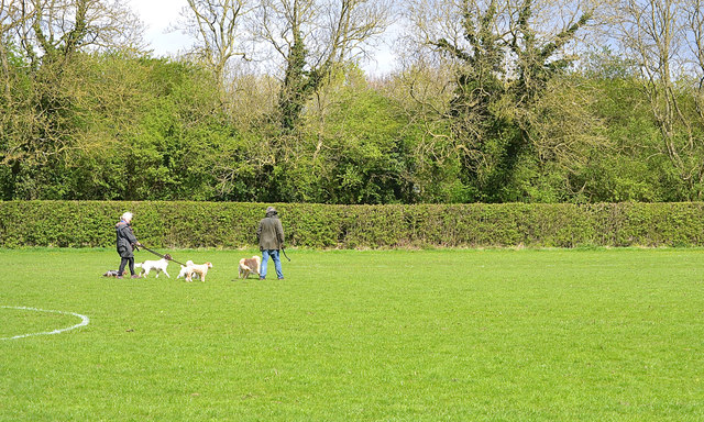 Dog walkers on the pitch, Newbold Comyn Park, Leamington