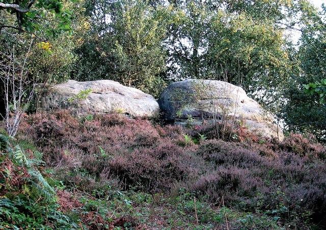 Sandrocks and heather, West Park Nature Reserve, Uckfield