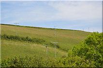 SX4250 : Grassy slope by N Chadwick