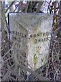 SJ6556 : Old Milepost by Ian Scrimgeour