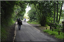 TQ3328 : Road to Ardingly Reservoir by N Chadwick
