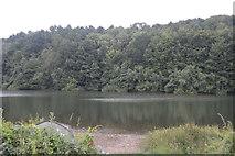 TQ3229 : Ardingly Reservoir by N Chadwick