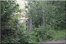 TQ3229 : Footpath junction by N Chadwick