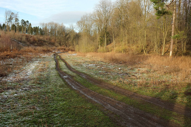 Track, Mackershaw Plantation