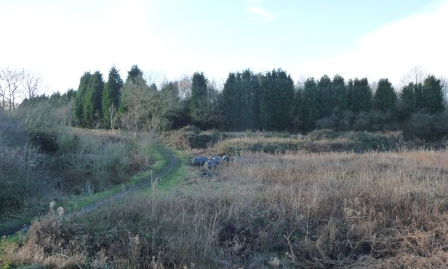 The southern end of the Greenfoot Bleach Works site