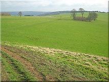 SK2369 : Calton Pastures by Trevor Rickard