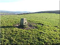 ST0184 : Summit marker on Mynydd Meiros by Gareth James